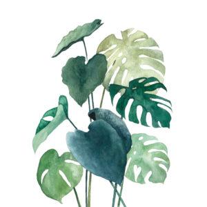 A5 Art Print Botanical